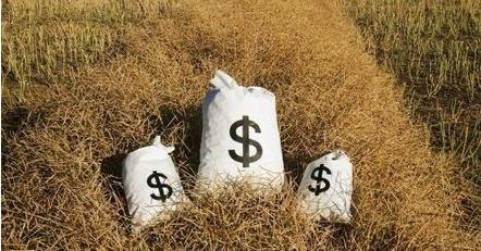 2021年农村金融市场数据分析研究专题报告合集(共10套打包)