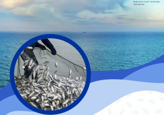 IBEF:全球水产养殖现状如何?2021年印度水产养殖业发展趋势报告